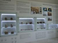 Ukázky expozice, po roce 2007