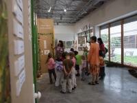 Výstava STROMY JAKO DOMY, 2006